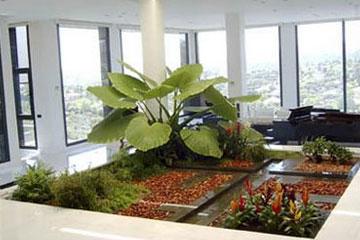 Soluciones integrales para la vivienda for Jardines pequenos para oficina